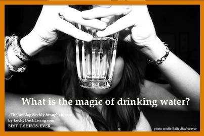 Water.Magic.FB