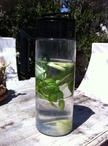Basil-Cucumber Water