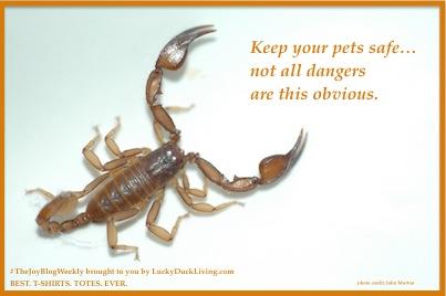 ScorpionPoison.FB